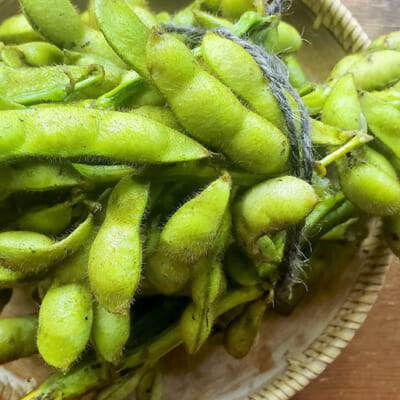 まぼろしの枝豆と呼ばれています