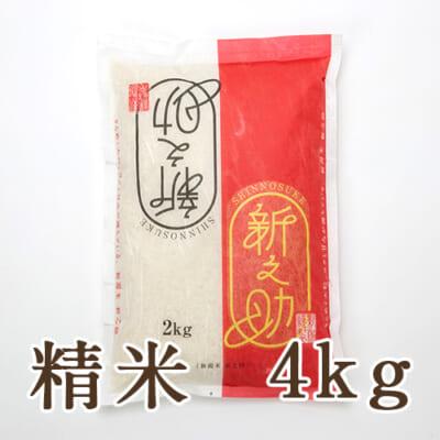 新潟産 新之助 精米4kg