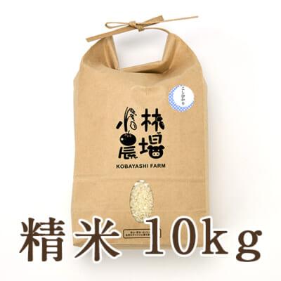 新潟産 コシヒカリ(従来品種)精米10kg
