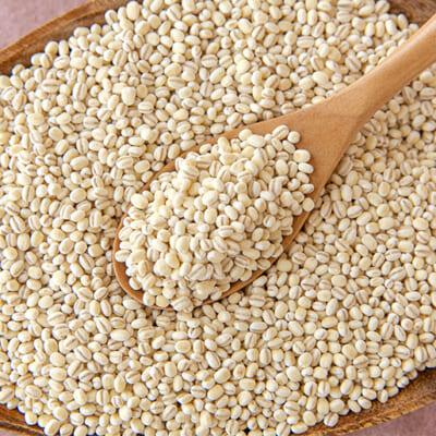もち麦は食物繊維が白米の約25倍!