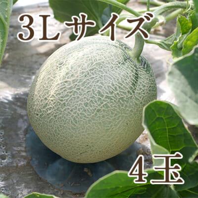 新潟県産 赤肉メロン 3Lサイズ 4玉入り