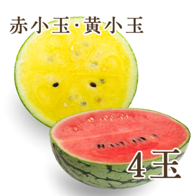 新潟県産スイカ 赤小玉・黄小玉 4玉入り