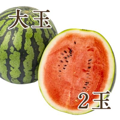 新潟県産スイカ 大玉(2L)2玉入り