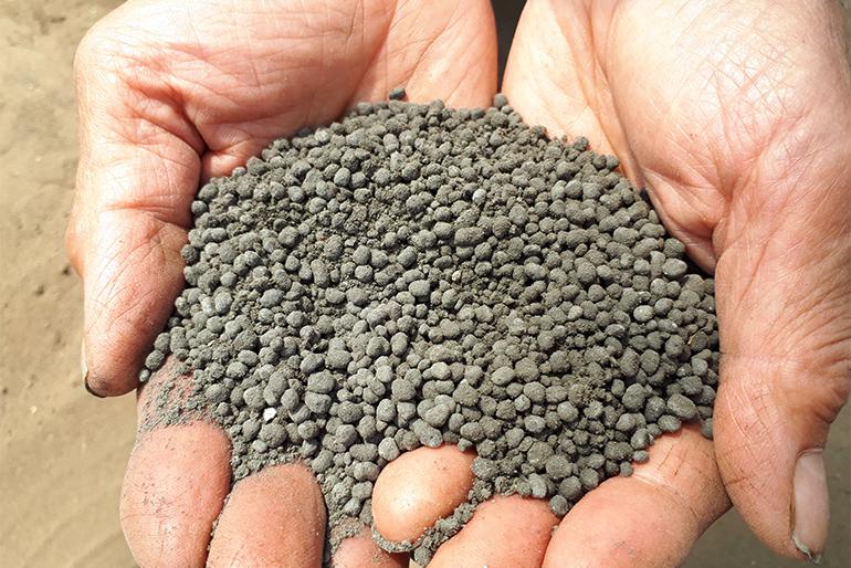 スイカ栽培に適した土壌に改良