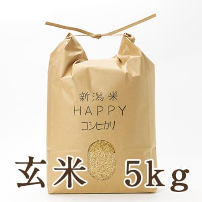 新潟県産 新潟米HAPPYコシヒカリ 玄米5kg