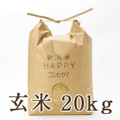 新潟県産 新潟米HAPPYコシヒカリ 玄米20kg