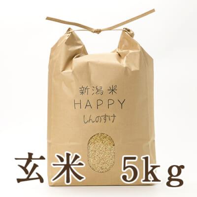 新潟県産 新潟米HAPPY新之助 玄米5kg