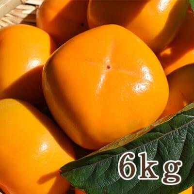 新潟県産 八珍柿 6kg