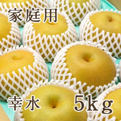 【家庭用】幸水 5kg