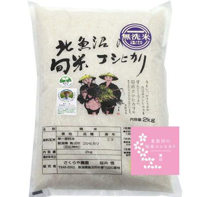 令和2年度米 北魚沼 旬米コシヒカリ(従来品種・無洗米)