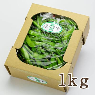新潟県産 枝豆 1kg