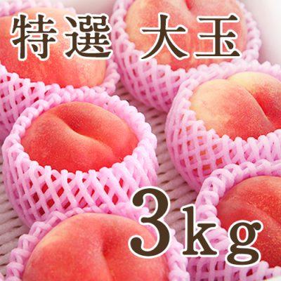 桃 特選 大玉3kg