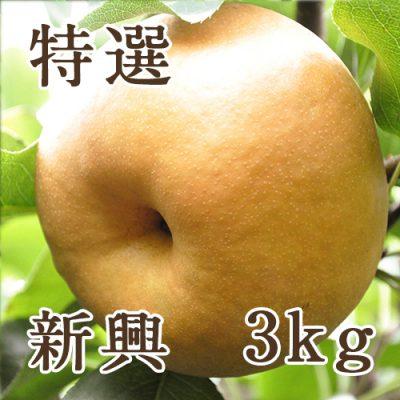 新興 特選 3kg