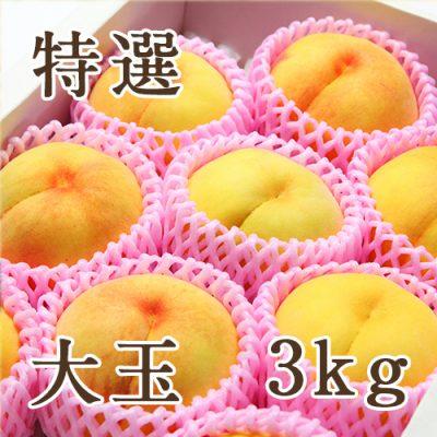 黄桃 特選 大玉3kg