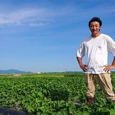 枝豆の美味しさを最大限に引き出す栄養管理