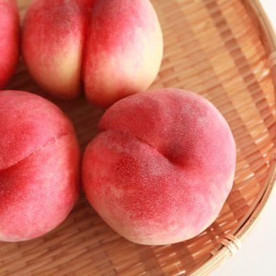 もぎたての完熟桃を産地直送でお届けします!