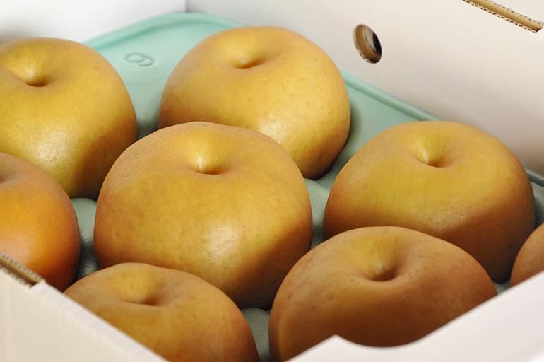 極上の梨は贈り物にもぴったり