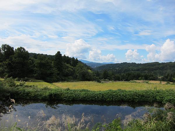魚沼の自然環境。棚田
