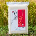 令和2年度米 糸魚川産新之助