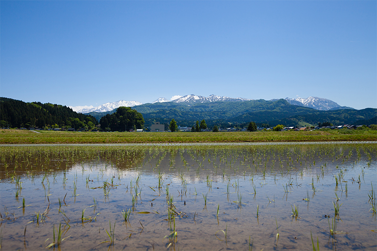 1.2,000m級の山々から流れる雪解け水