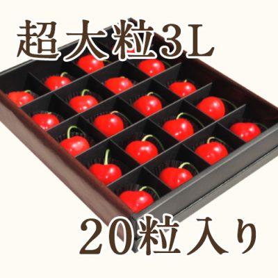 佐藤錦 超大粒3Lサイズ 20粒入りプレミアム