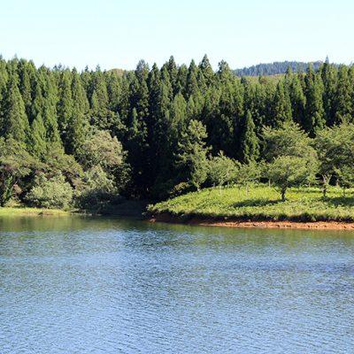 苗場山から流れる湧水