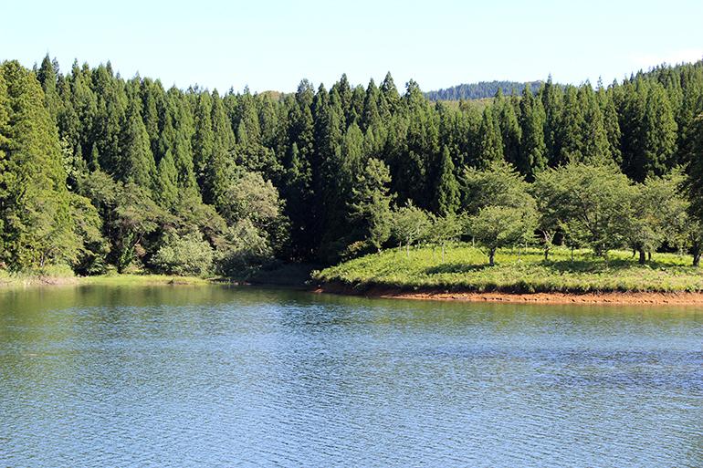 1.苗場山から流れ出るキレイな水
