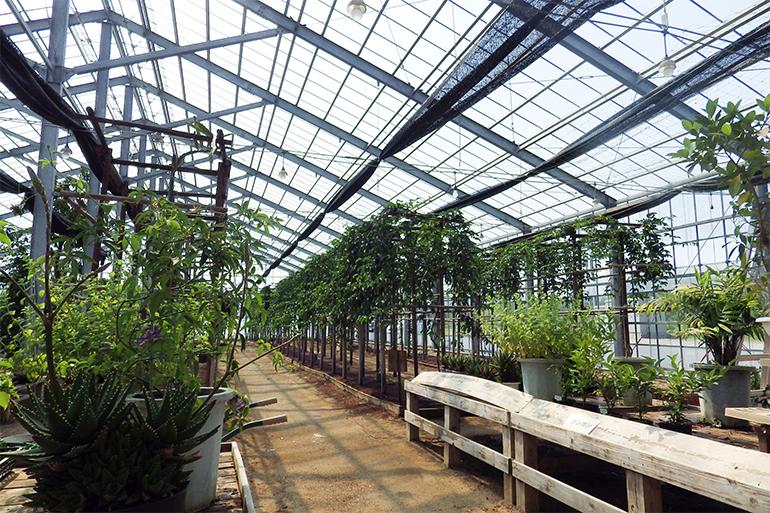 環境に優しい循環型農業の導入
