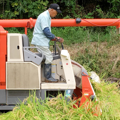 有機肥料にこだわった安心安全なお米