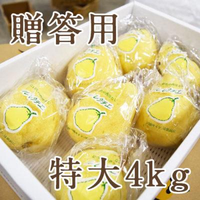 【贈答用】特大 ル・レクチェ 4kg(5~8玉)