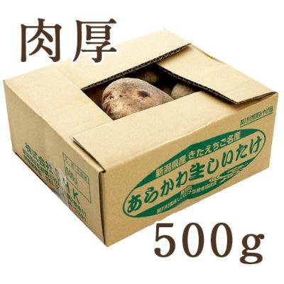 【肉厚】あらかわ生しいたけ 500g