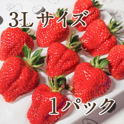 【初摘み】越後姫 3Lサイズ 1パック入り