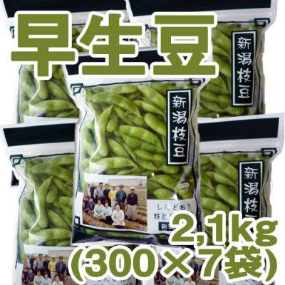 しんどおり早生豆2.1kg(300g×7袋)