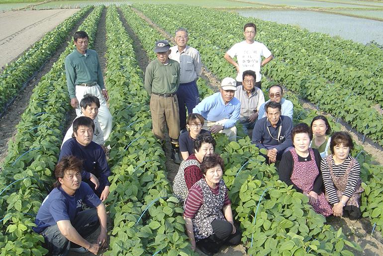 茶豆栽培のベテランが集結!しんどおり茶豆生産組合