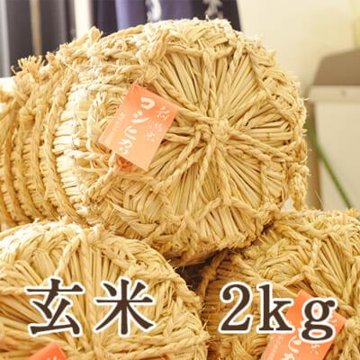 【定期購入】新潟県産コシヒカリ 玄米2kg
