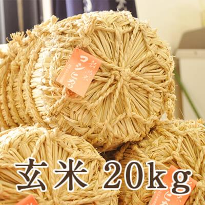 【定期購入】新潟県産コシヒカリ 玄米20kg