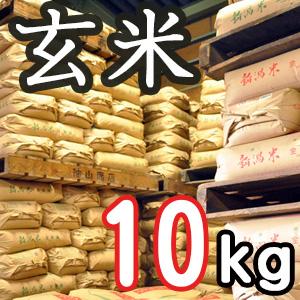 新潟県産こしいぶき 玄米10kg