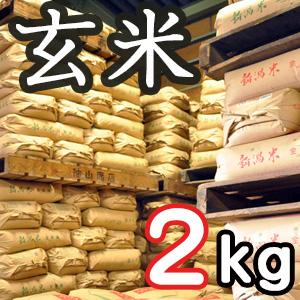 【定期購入】新潟県産こしいぶき 玄米2kg
