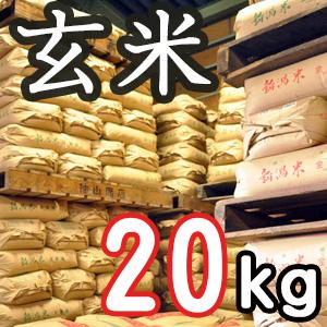 【定期購入】新潟県産こしいぶき 玄米20kg