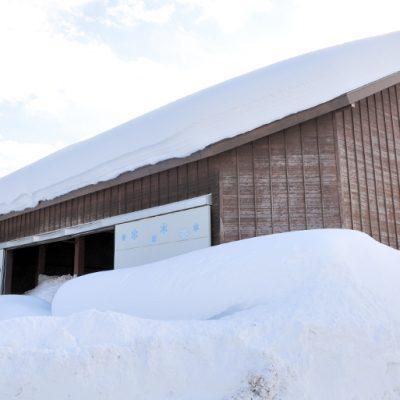 雪室珈琲 詰め合わせ