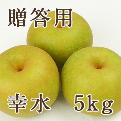 【贈答用】幸水 5kg(9~18玉)