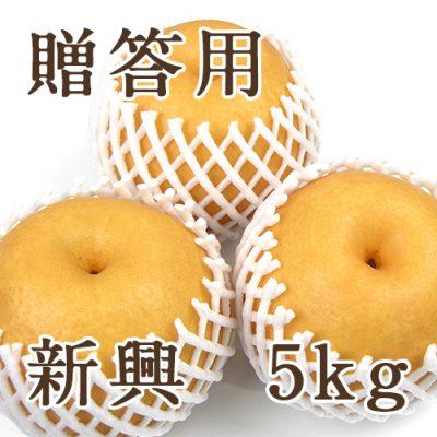 【贈答用】新興 5kg(6~11玉)