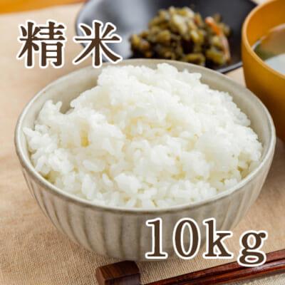佐渡産ササニシキ 精米10kg