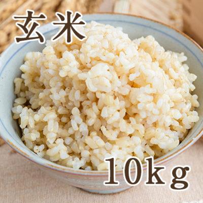 佐渡産ササニシキ 玄米10kg