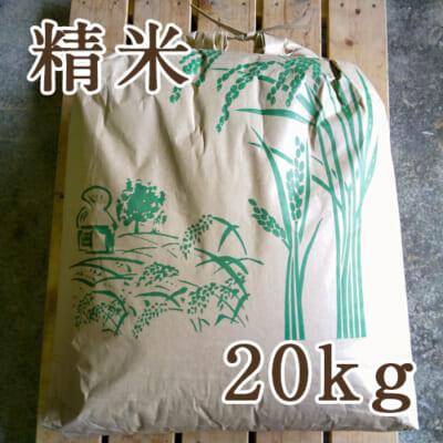 佐渡産ササニシキ 精米20kg
