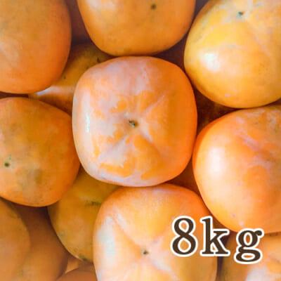 佐渡産 八珍柿 詰め合わせ8kg