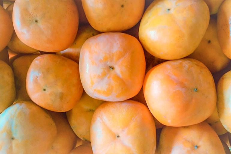 農薬と化学肥料不使用で栽培