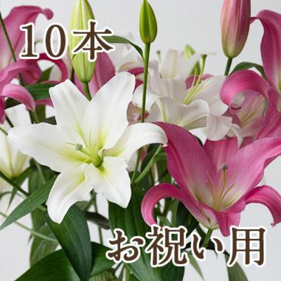 【お祝い用ラッピング】オリエンタルユリ(白・ピンク)選べる10本