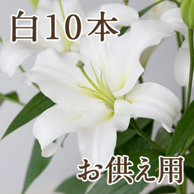 【お供え用ラッピング】オリエンタルユリ 白10本
