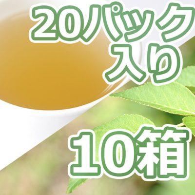 タラの葉茶 20パック入り×10箱